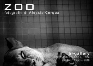 zoo cerqua