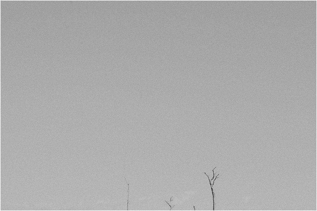 litorale roma-0155