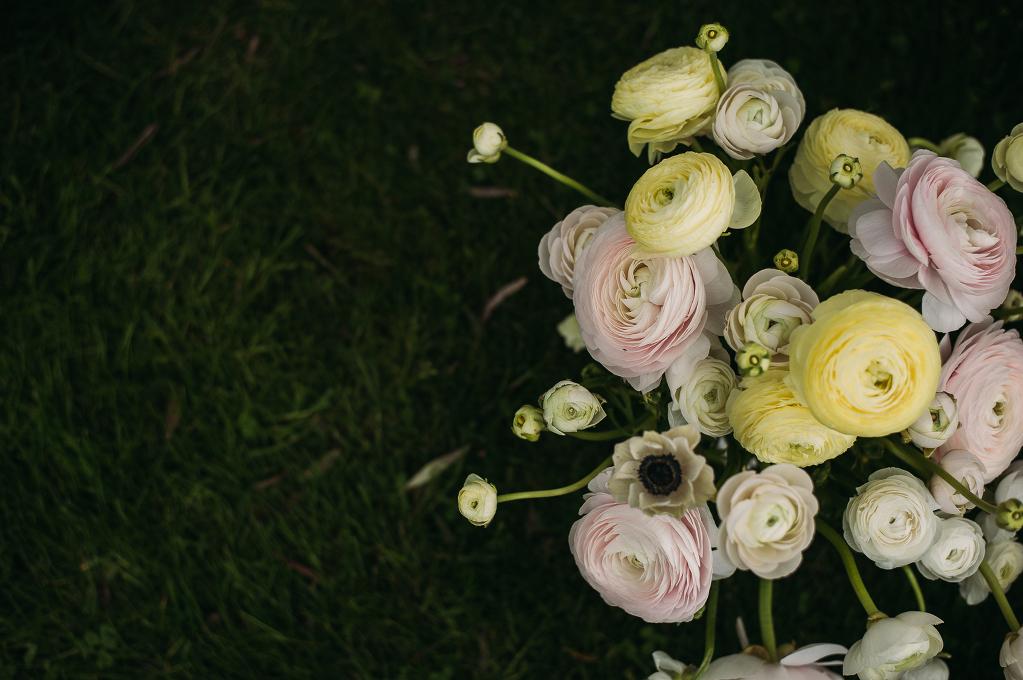 FLOWER_ 128