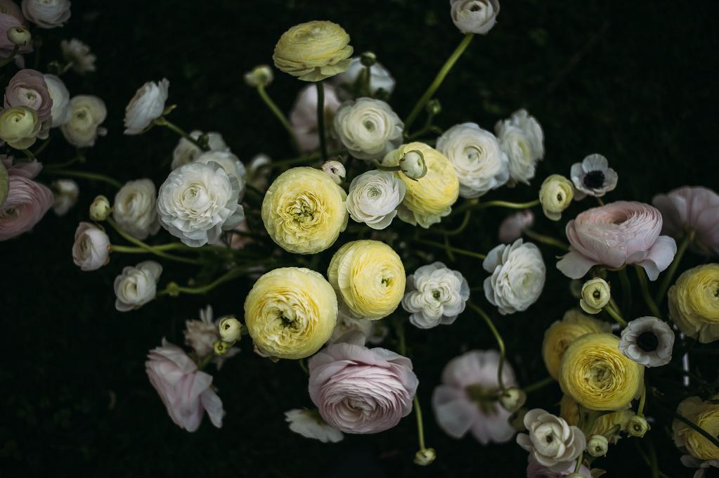 FLOWER_ 89