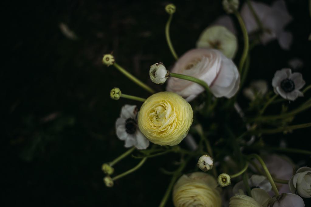 FLOWER_ 94